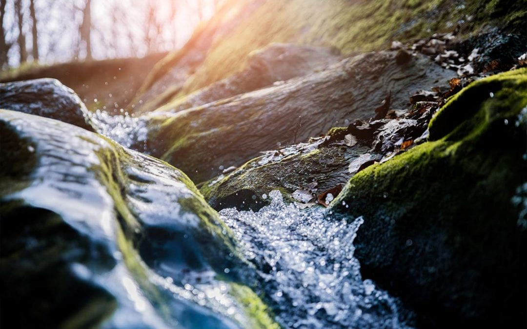Be Like Water